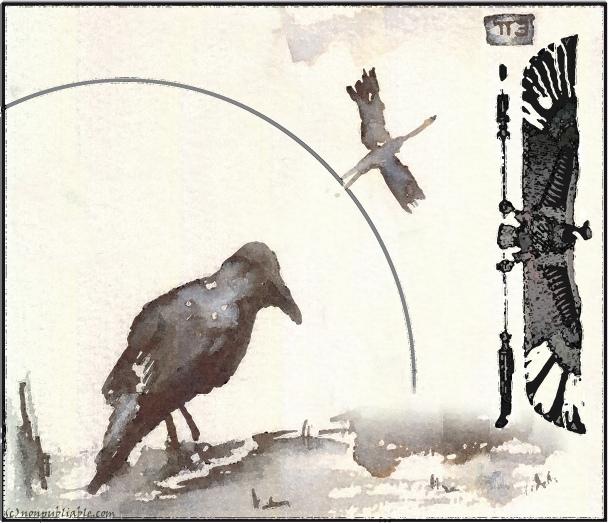 métamorphoses de l'oiseau