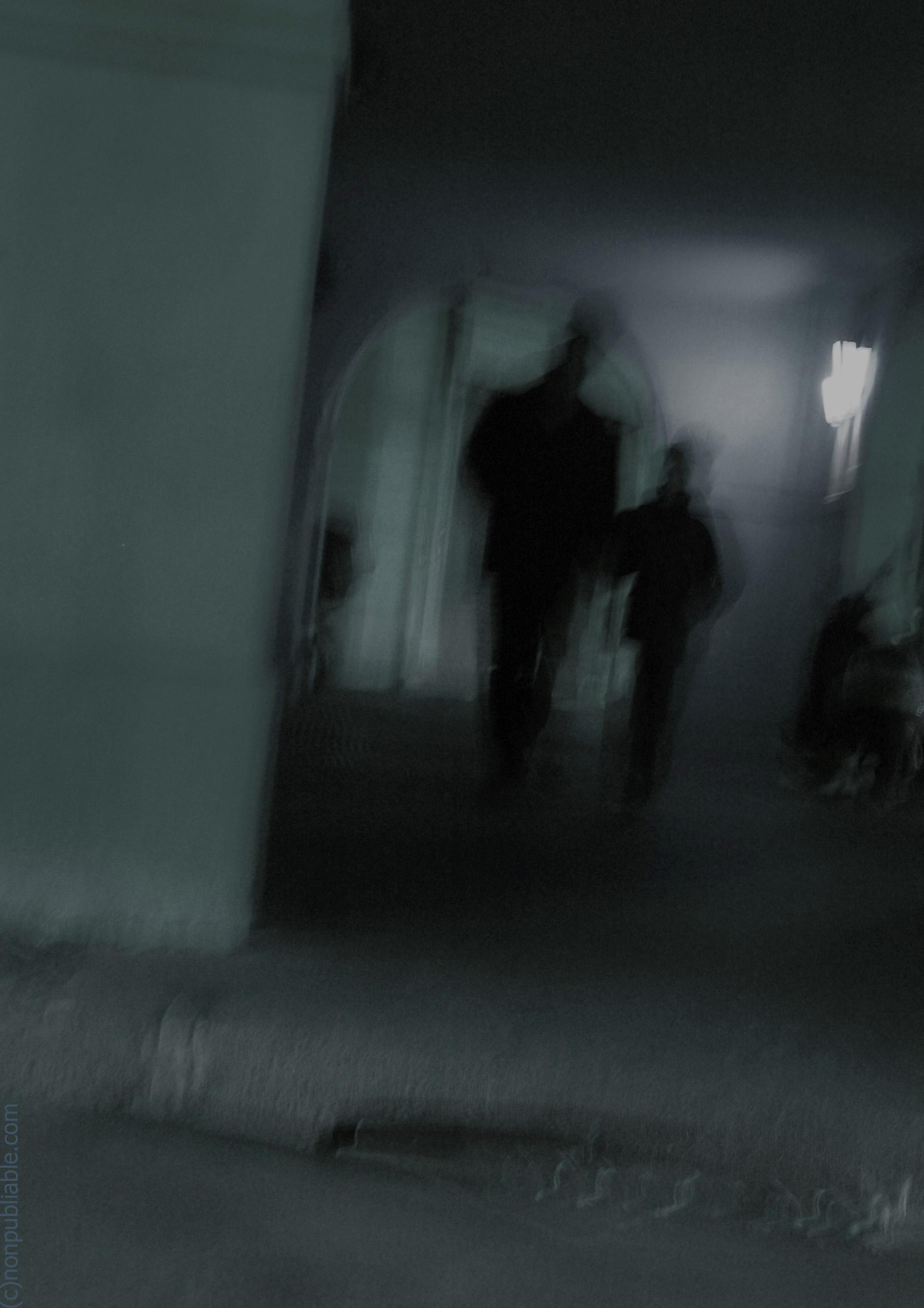 la venue des ombres